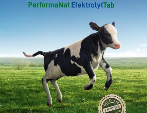 Endlich ist es soweit: PerformaNat ElektrolytTab für Kälber