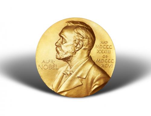 Der diesjährige Nobelpreis wird für die Entdeckung der TRP Kanäle vergeben